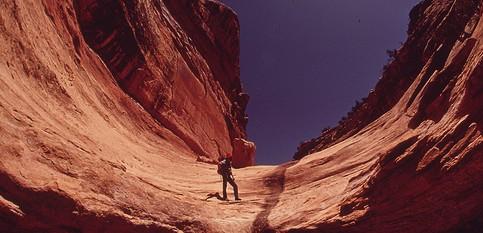 巨大な天然の迷路